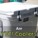 YETI Coolers – Worth It?  Or Just Hype? (YETI Reviews 2017)