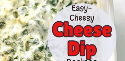 Cheesy Party Cheese Dip Recipes You MUST Try At Home